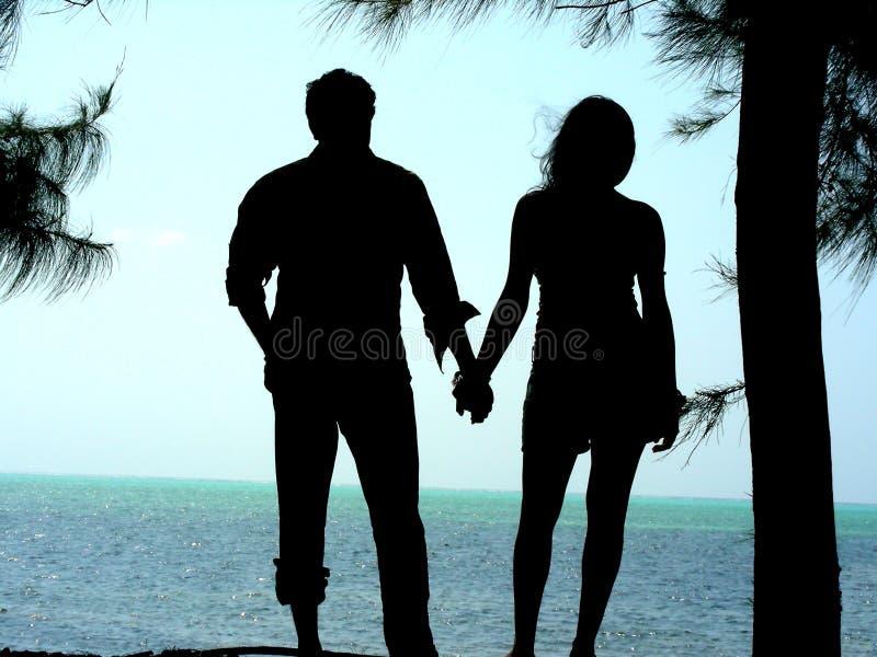 Stilvolle Paare stockfotos