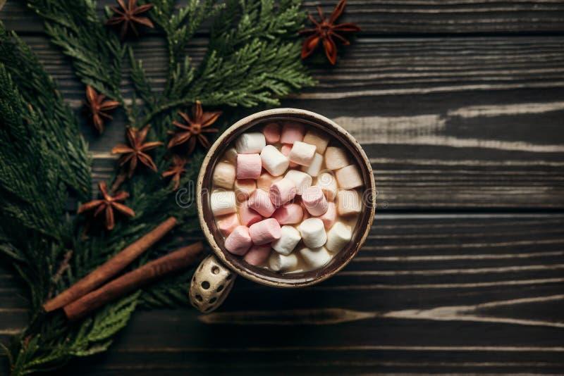 Stilvolle rustikale Winterebenenlage der Schokoladenkakaoschale mit Farbe lizenzfreie stockfotos