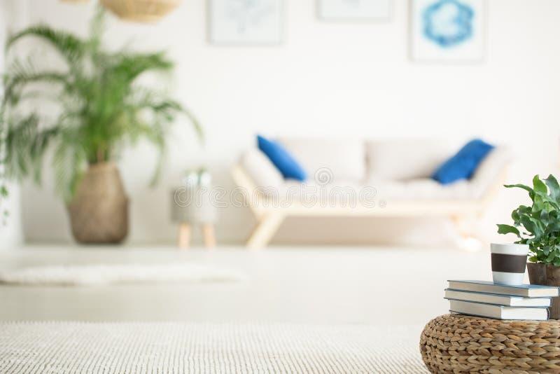 Stilvolle, weiße Wohnung mit Sofa stockfotografie