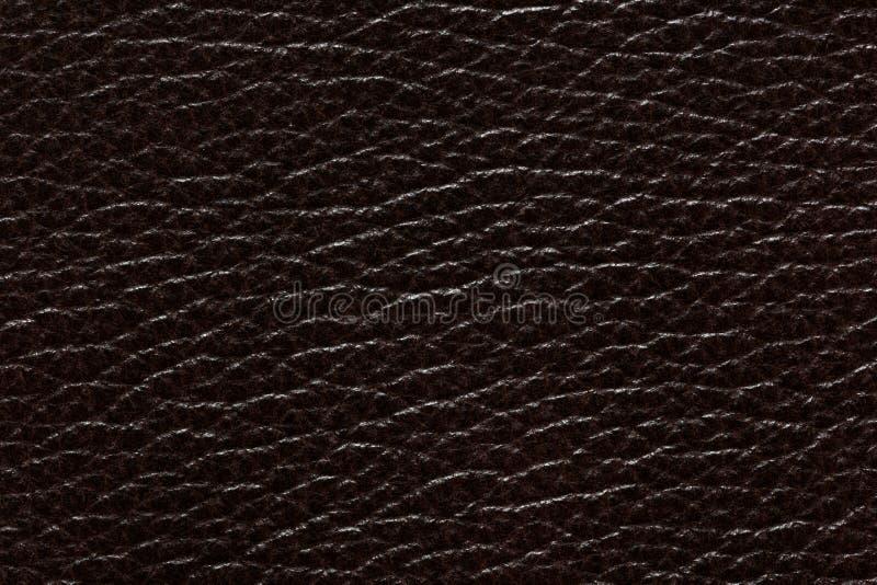 Stilvoller lederner Hintergrund in der eleganten dunklen Farbe lizenzfreies stockbild