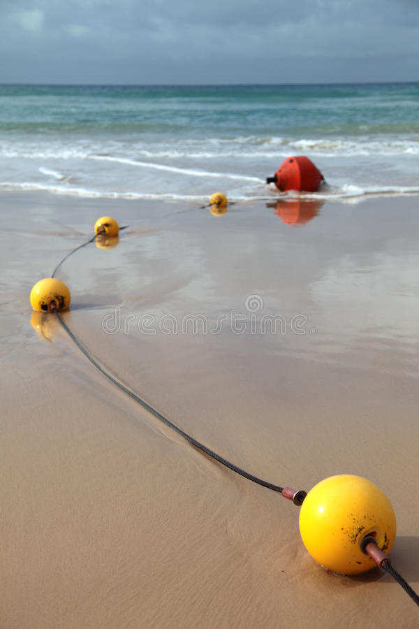 Download Stinger Jellyfish Protection Net Royalty Free Stock Photography - Image: 15625567
