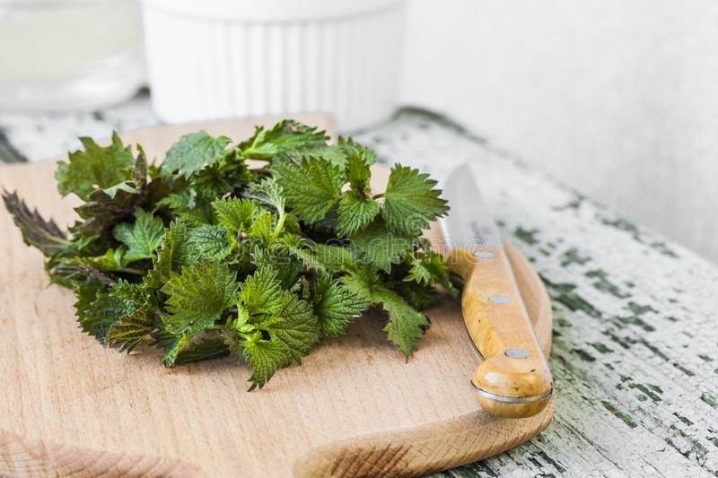Stinging nettle on a cutting board stock photos
