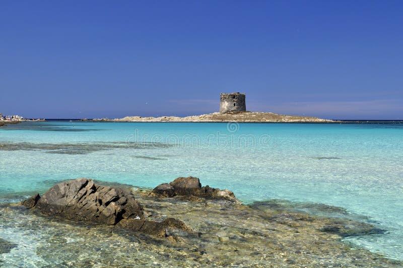 Stintino, Сардиния, Италия стоковая фотография rf
