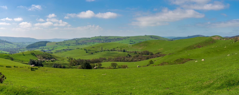 Stiperstones nationell naturreserv, Shropshire, England, UK royaltyfri bild