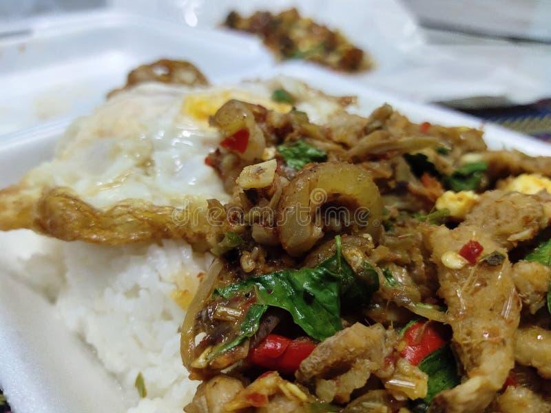 Stir зажарил пряную Тайскую кухню яичницы хряка стоковая фотография rf