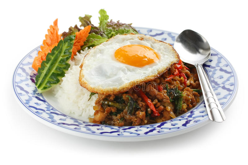 Stir fried chicken with holy basil , gai pad bai g. Stir fried minced chicken and thai holy basil with fried egg and rice stock photography