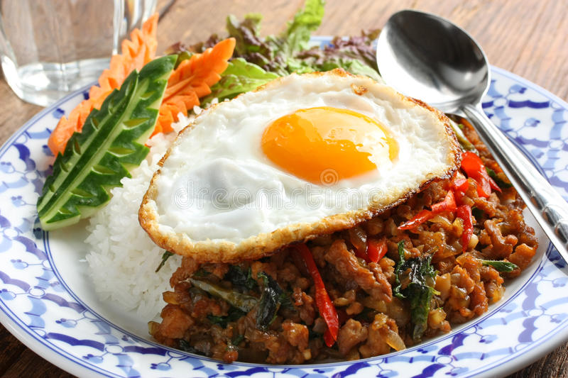 Stir fried chicken with holy basil , gai pad bai g. Stir fried minced chicken and thai holy basil with fried egg and rice royalty free stock photos