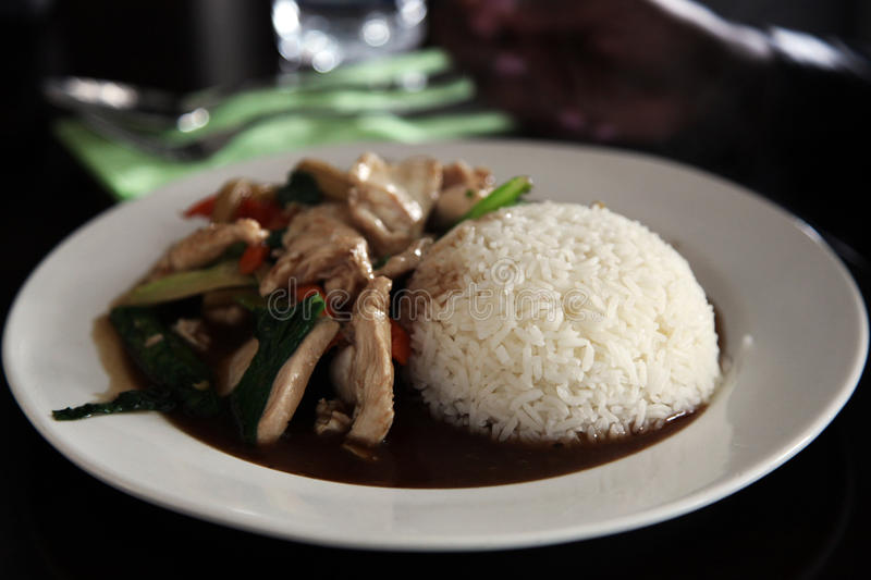 Stir-fried chicken with rice stock photo