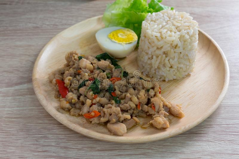 Stir fried chicken whit basil on rice stock photo