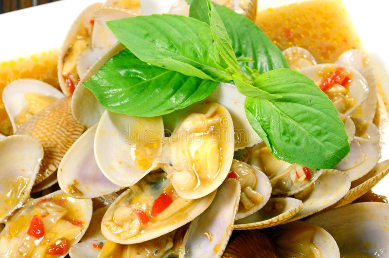 STIR FRIED CLAMS WITH ROASTED CHILI PASTE. SPICY THAI STIR FRIED CLAMS WITH ROASTED CHILI PASTE AND THAI BASIL LEAVES stock photography