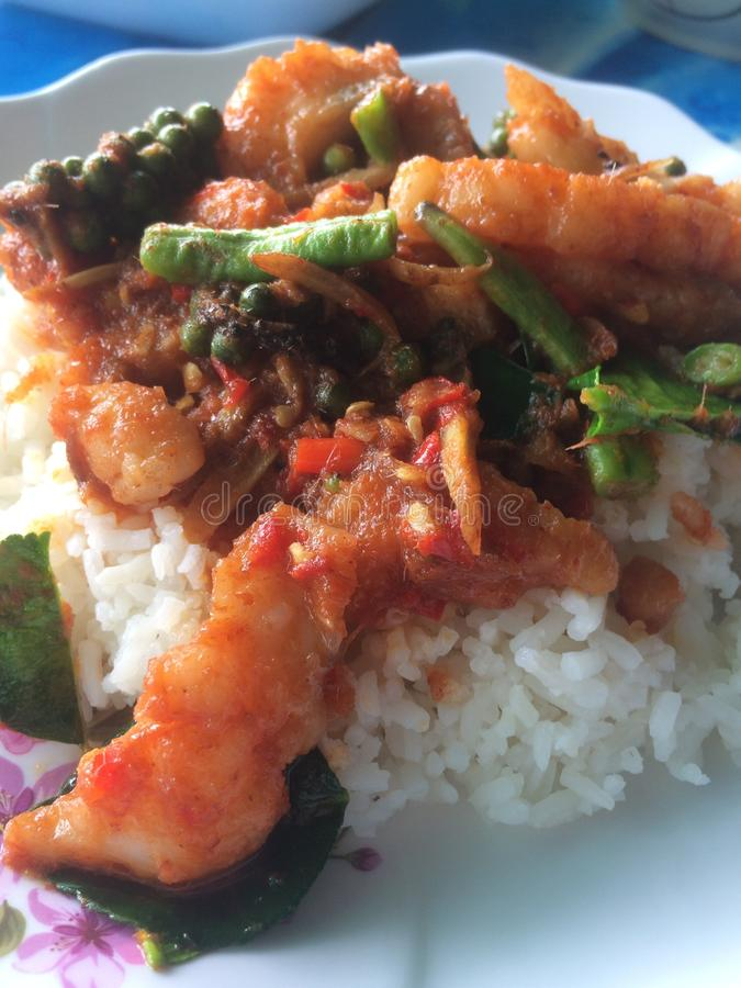 Stir fried Dolly fish. With Long beans fresh pepper and topped with rice royalty free stock images