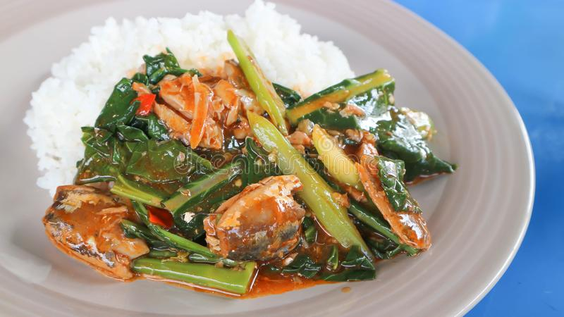 Stir-fried kale with tinned fish and rice stock photography