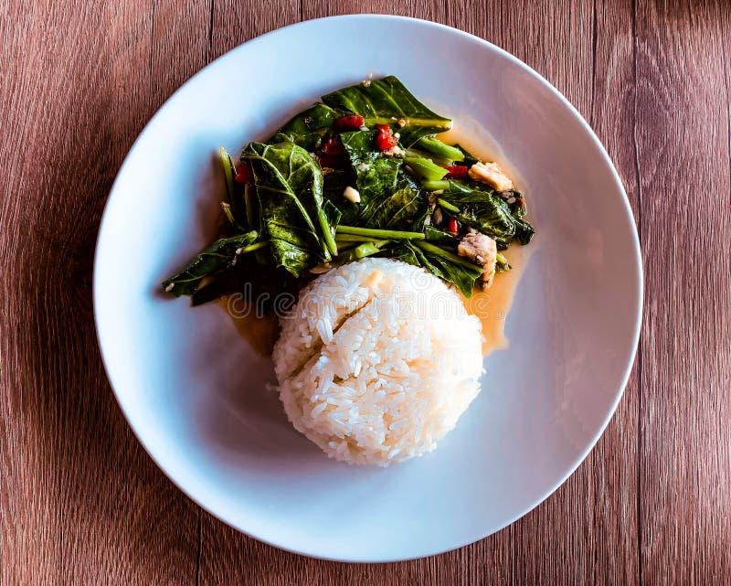 Stir-fried kaled med dentorkade rimmade fisken med ris royaltyfri foto