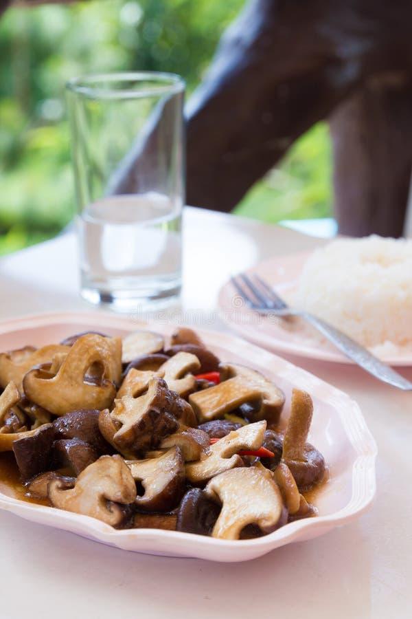 Download Stir-Fried Mushroom stock image. Image of abstinence - 27378167