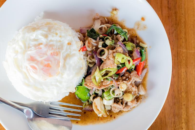 Stir-fried pork and herb with rice or stir-fried Jango, Thai foo. D royalty free stock photos