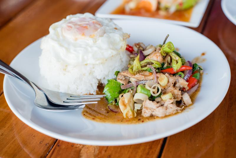 Stir-fried pork and herb with rice or stir-fried Jango, Thai foo. D stock photography