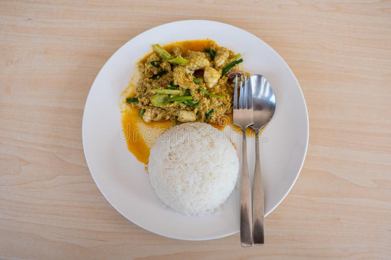 Stir-fried squid with curry powder. Thai food, stir-fried seafood with rice stock photo