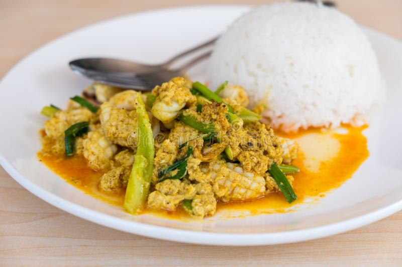 Stir-fried squid with curry powder. Thai food, stir-fried seafood with rice stock images