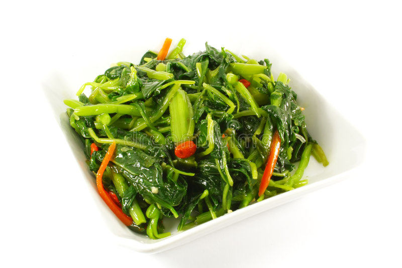 Stir Fried Vegetables. On a White Plate Single Serving stock image