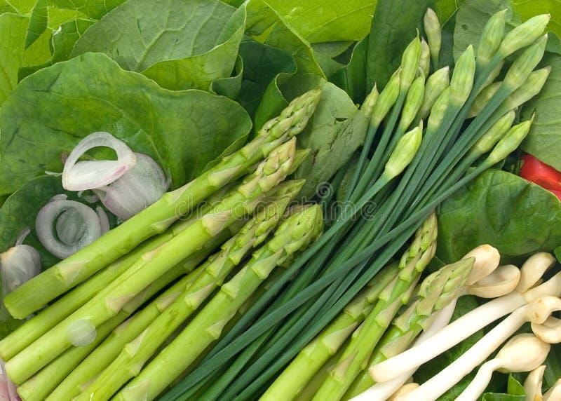 Stir-fry. Fresh stir-fry vegetables with peanut-shoots stock photo