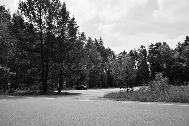 Stirrande Splavy, Tjeckien - Maj 19, 2018: parkerat bilOpel Astra H på parkling mycket för turist between sörjer i Machuv kraj tu royaltyfri fotografi