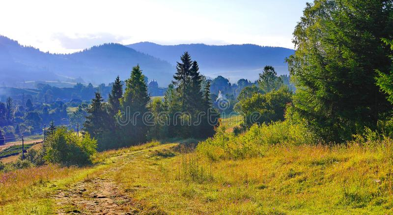 Stitch downward despite the high fir trees on the background of distant black mountains. For your design royalty free stock image