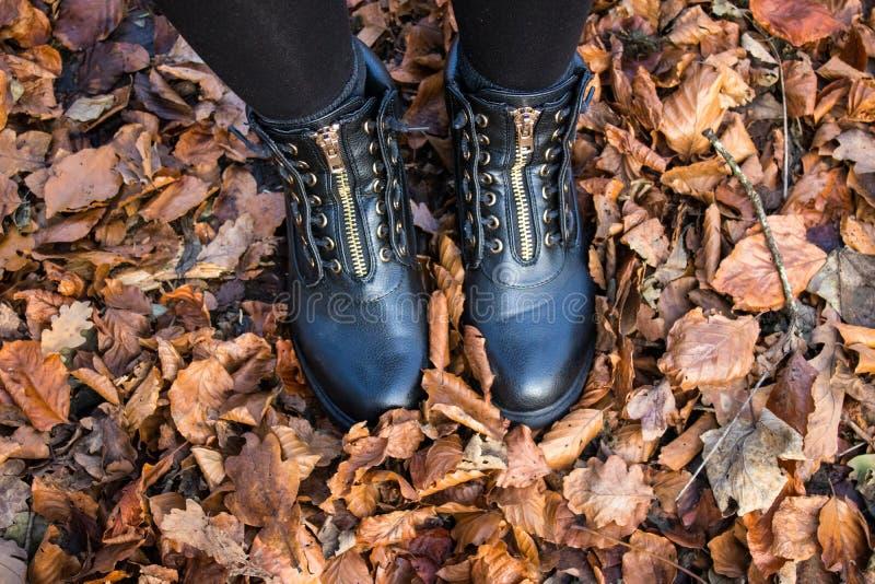 Stivali d'uso della donna e camminare nelle foglie di autunno immagine stock