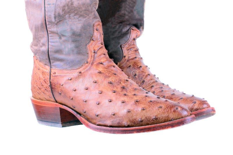 Stivali di cuoio dello struzzo immagini stock libere da diritti