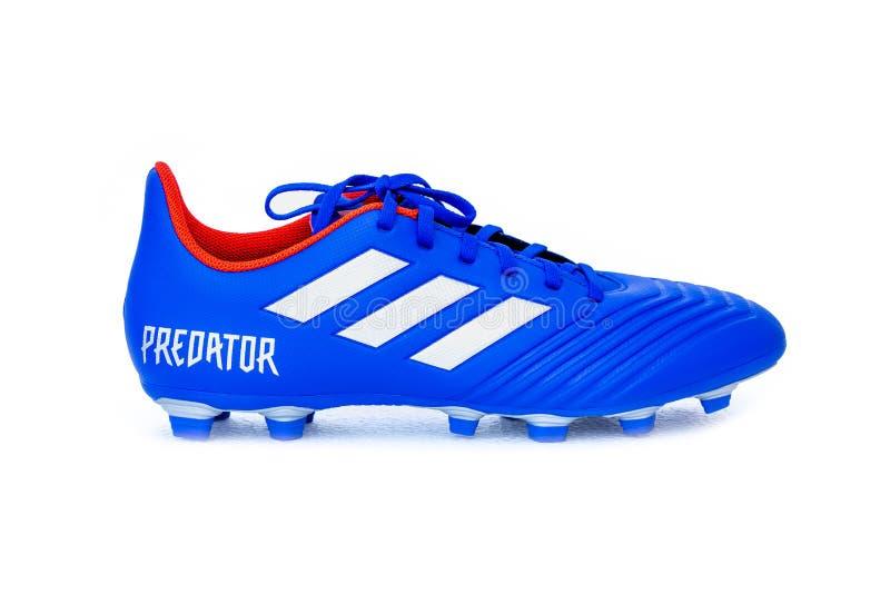 Stivali PREDATORI di calcio di Adidas su bianco immagine stock