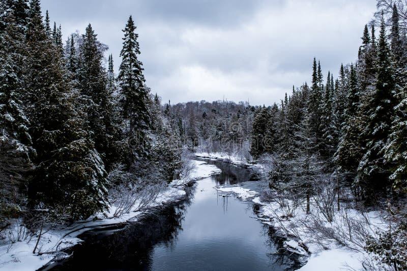 Stjäla blå den inter-liten vik och skogen royaltyfri foto