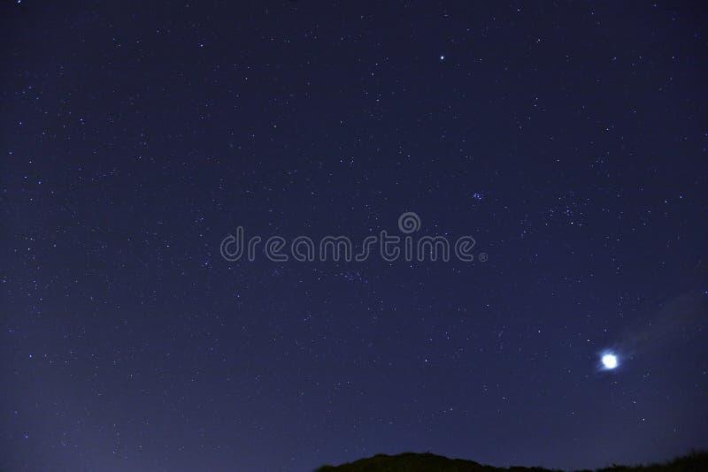 Stjärna på natten royaltyfri foto