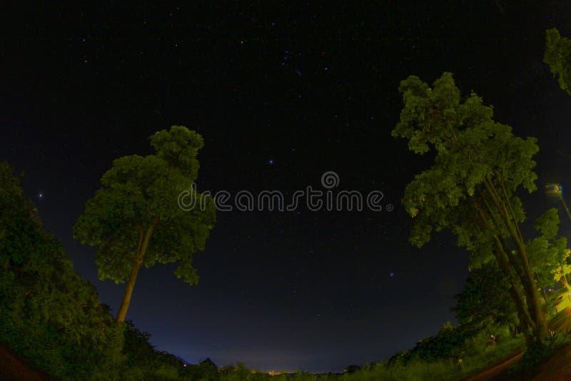 Stjärna på natten royaltyfria bilder