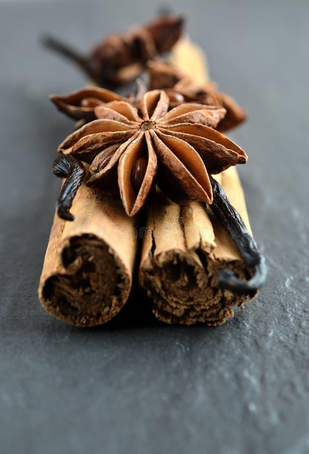 Stjärnaanis, vanilj och kanelbruna pinnar. arkivbild