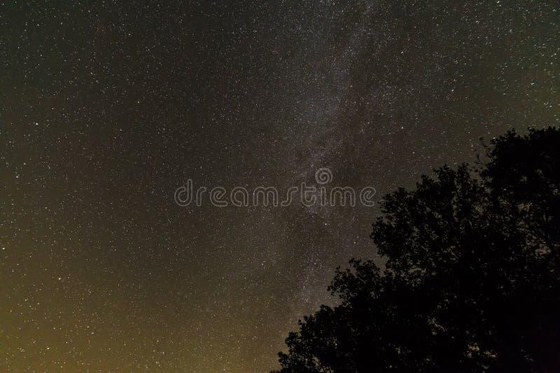 Stjärnklar himmel med den mjölkaktiga vägen i sommaren, Bayern, Tyskland royaltyfri fotografi