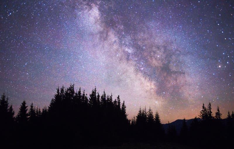 Stjärnklar himmel ovanför den sceniska jorden fotografering för bildbyråer