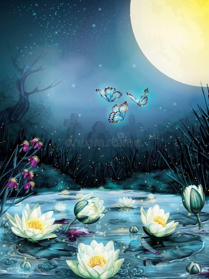 Stjärnklar natt i träsket royaltyfri illustrationer