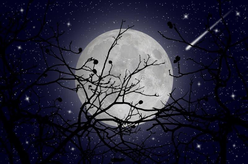 Stjärnklar natt och komet fotografering för bildbyråer