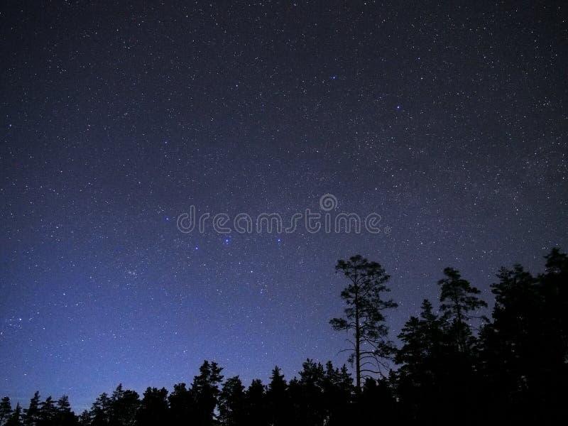 Stjärnor för natthimmel observera Cassiopeiakonstellation royaltyfria foton