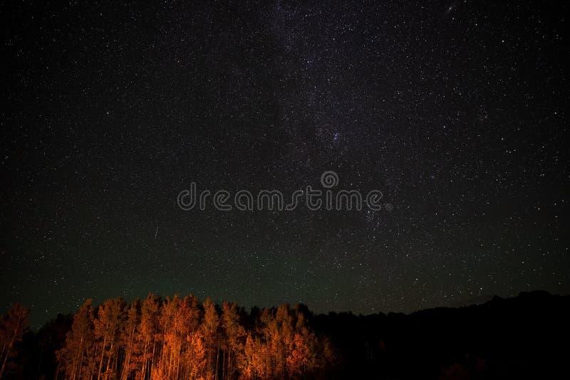 Stjärnor och den mjölkaktiga vägen på en klar Colorado nattstund sörjer trädglöd från en närliggande lägerbrand royaltyfri foto