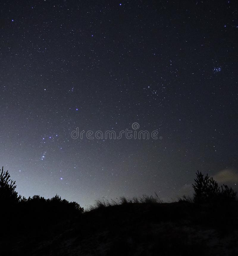 Stjärnor Orion för natthimmel och Oxenkonstellationer observera arkivbild