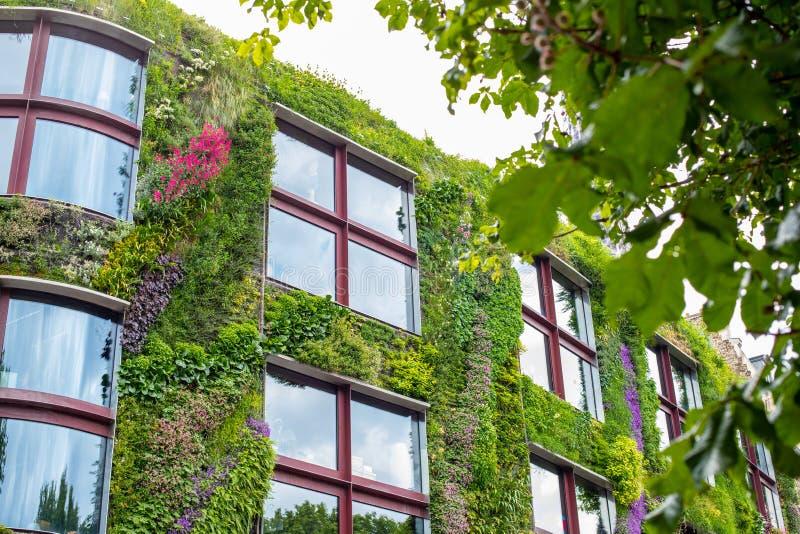 stj?rnor f?r gr?nt hus f?r galax f?r astronomibakgrundsblodstockning Byggnaden dekoreras med grönska och blommor Miljövänlig bost arkivfoton