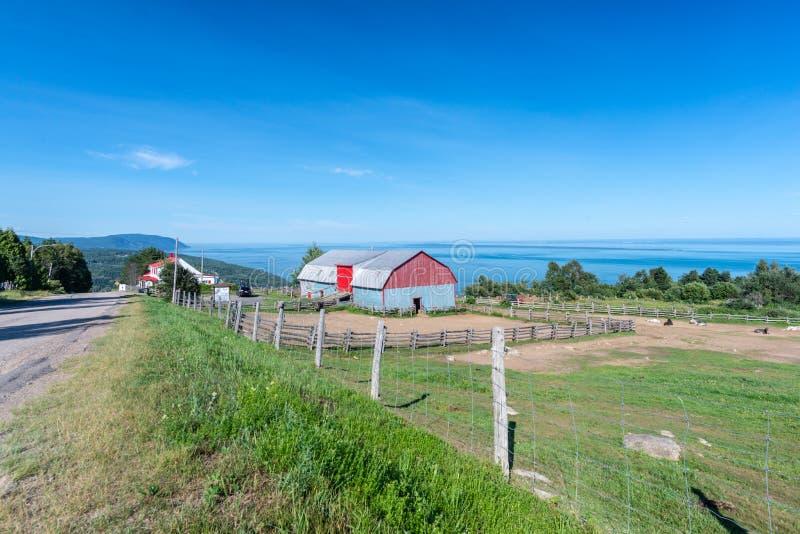 StLawrence rzeka i czerwień malujący gospodarstwo rolne, Quebec obraz royalty free
