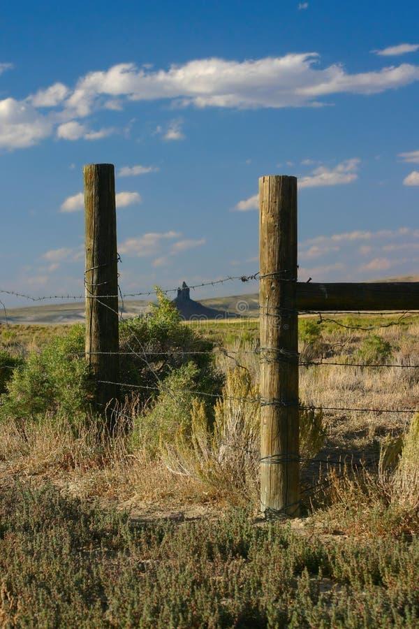 Stoßzahn des Ebers durch alten Zaun lizenzfreies stockbild