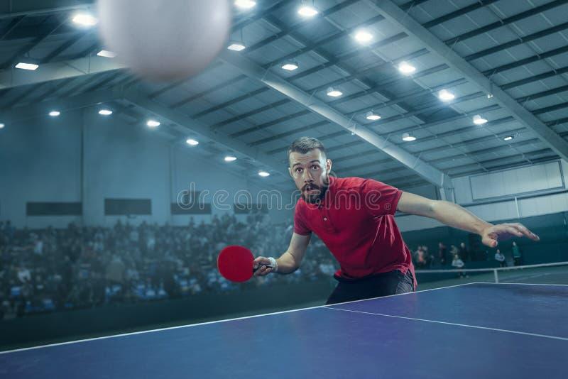 Stołowa gracz w tenisa porcja obrazy royalty free