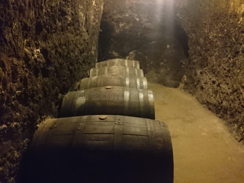 Stoccaggio bulgaro Melnik Bulgaria del vino rosso fotografia stock libera da diritti