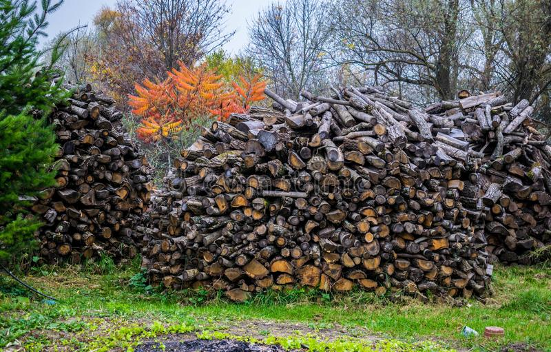 Stock of firewood for the winter royalty free stock photography