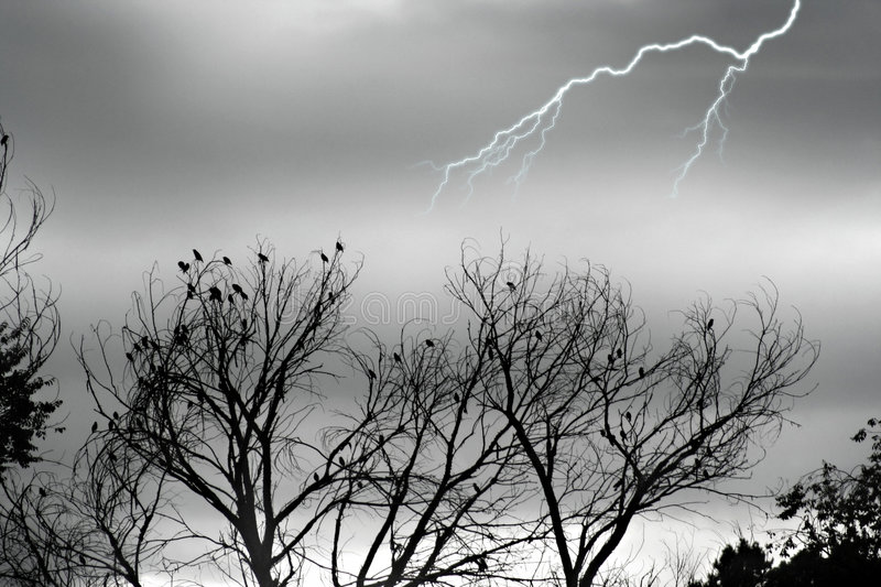 Stock image of Silver Storm royalty free stock photos