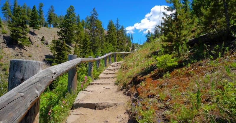 Stock image of Wraith Falls, Yellowstone National Park, USA royalty free stock photo