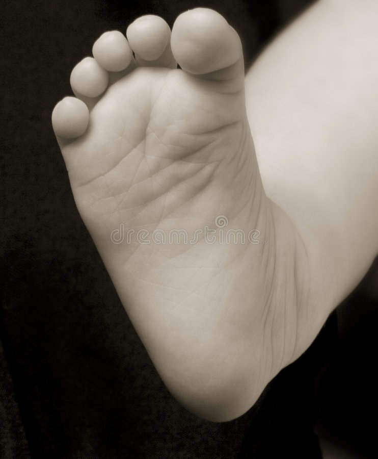 Stock Photo of a baby foot stock image