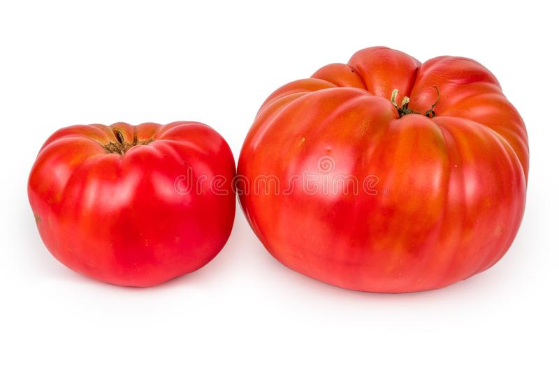 Heirloom tomato isolated on white background. Stock photo of heirloom tomato isolated on white background stock photography